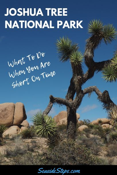 Joshua-Tree-National-Park-One-Day-visit