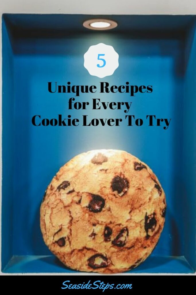 Chocolate Chip Cookie2